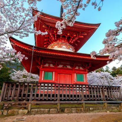 Voyage au Japon - Volcans et incontournables du Japon