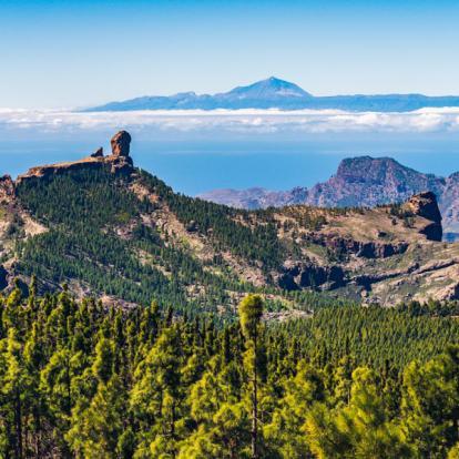Autotour aux Canaries - Gran Canaria en Liberté
