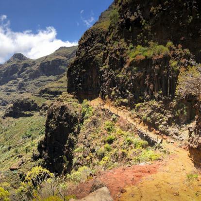 Voyage aux Canaries - Tenerife et la Gomera en Liberté