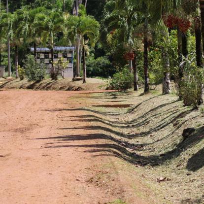 Voyage en Guyane - Circuit Découverte Nature
