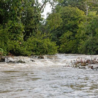 Circuit en Guyane - L'Aventure sur le Fleuve Maroni