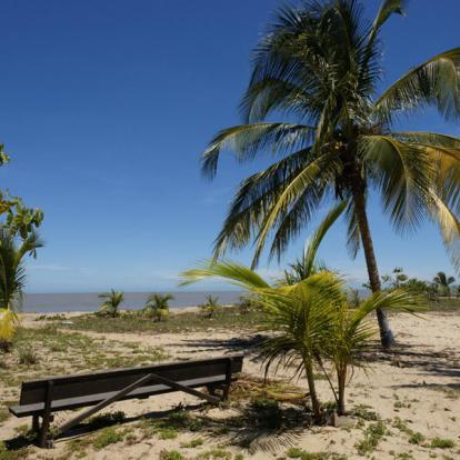 Circuit en Guyane - Histoire et Culture de La Guyane