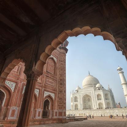 Voyage en Inde - Palais et Tigres en famille