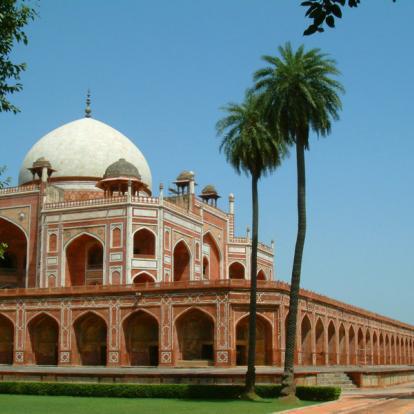 Voyage ne Inde - Palais et Tigres en famille