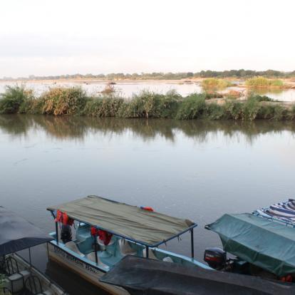 Circuit en Tanzanie - Terre sauvage et île secrète