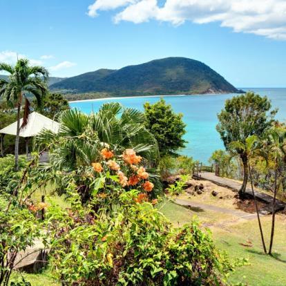 Voyage en Guadeloupe - L'Or vert de Guadeloupe