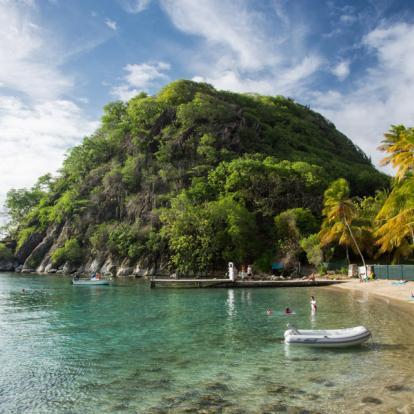 Circuit en Guadeloupe - L'Or vert de Guadeloupe