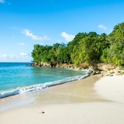 Voyage en Guadeloupe - Romance Créole