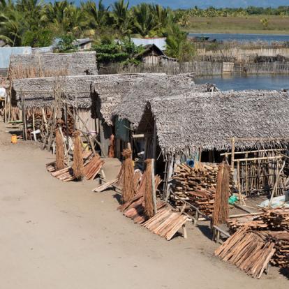 Circuit à Madagascar - L'Est; le refuge des Indris