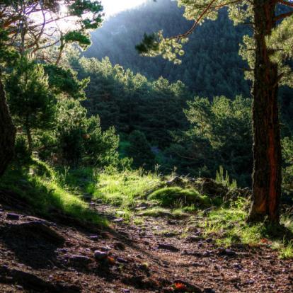 Voyage en Andorre - Eveil des sens