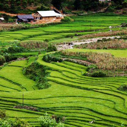 Voyage au Vietnam - De Sapa à la Baie D'Halong