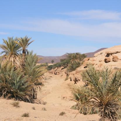Circuit au Maroc - Merveilles de L'Anti Atlas