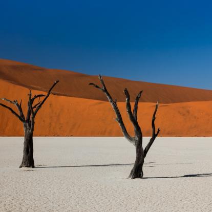 Circuit en Namibie - D'Etosha Au Fish River Canyon