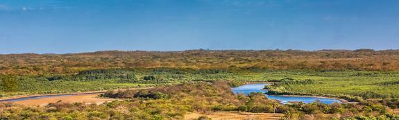 La réserve Estero Padre Ramos